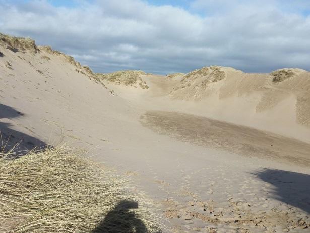Sand dunes at Balmedie Beach